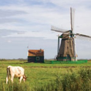 Netherlands: direct buried retractable cable