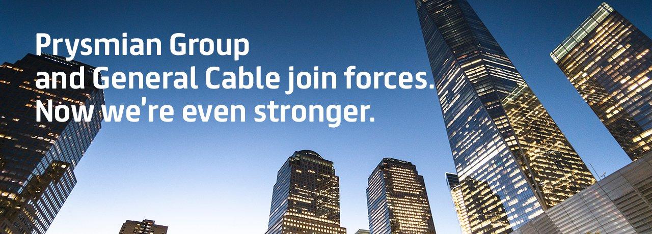 成立新组织,并购美国通用电缆公司,全球任命450名管理者